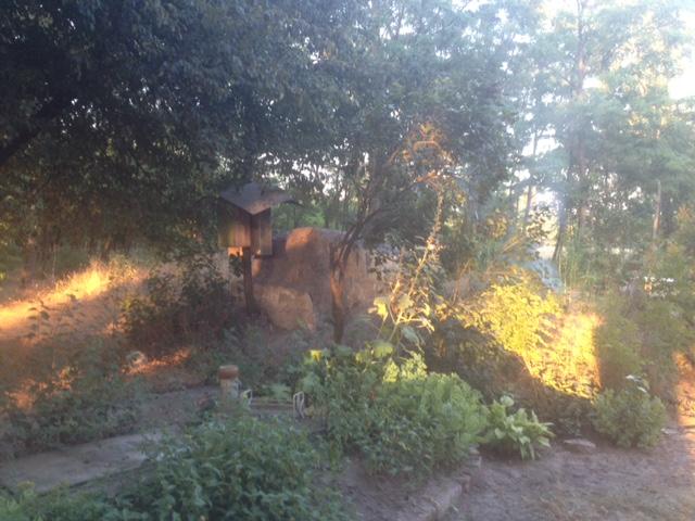 Eladó Tanya 2,1 ha területtel és 8180 m2 akác erdő Lajosmizse, Alsólajoson