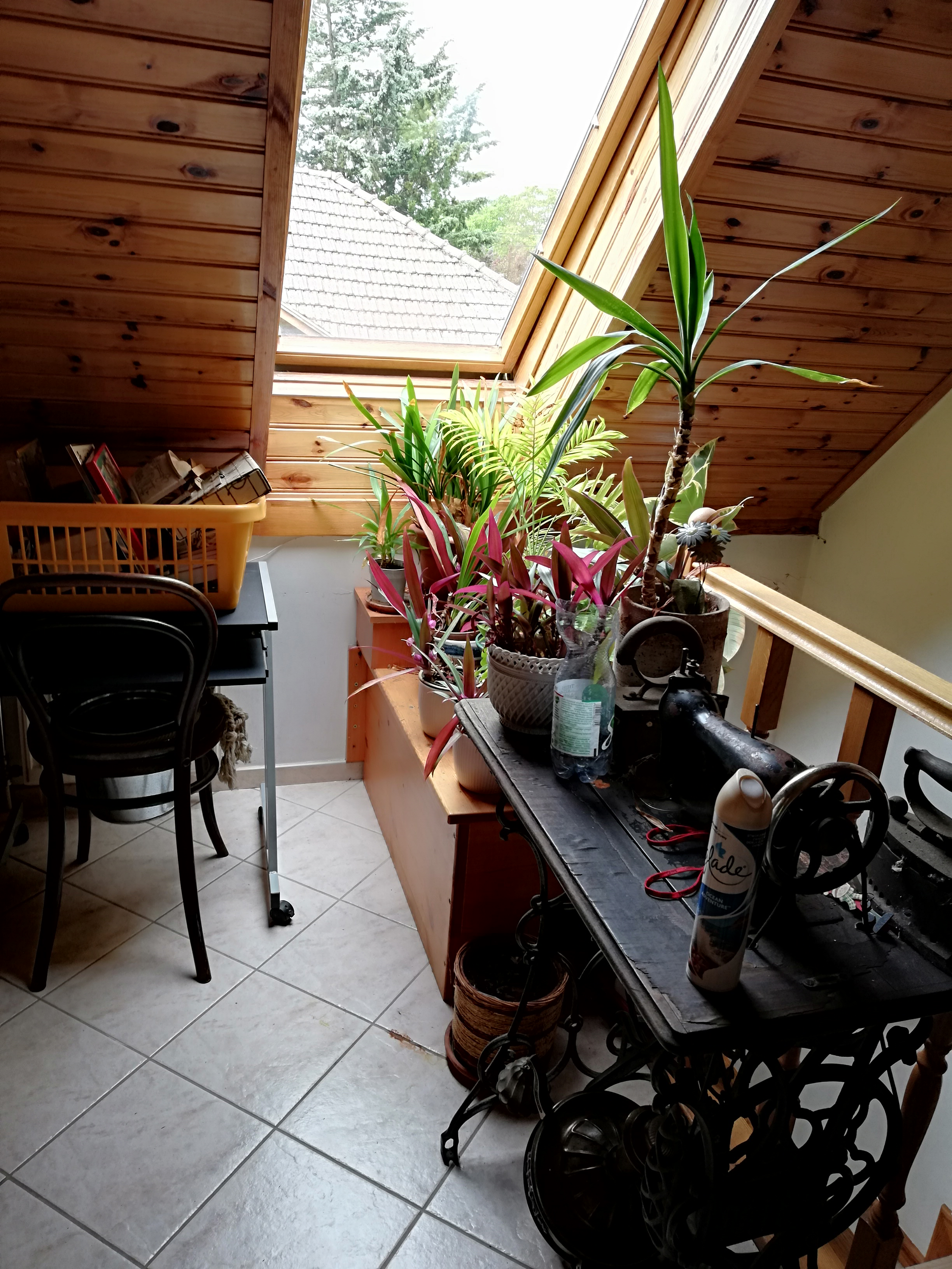 Lajosmizsén kiadó 24 m2-es iroda helyiség