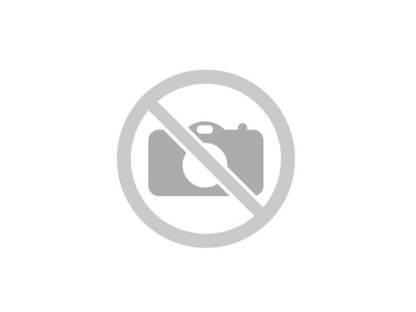 Eladó közművesített telkek Lajosmizsén a Ricsováry majorban